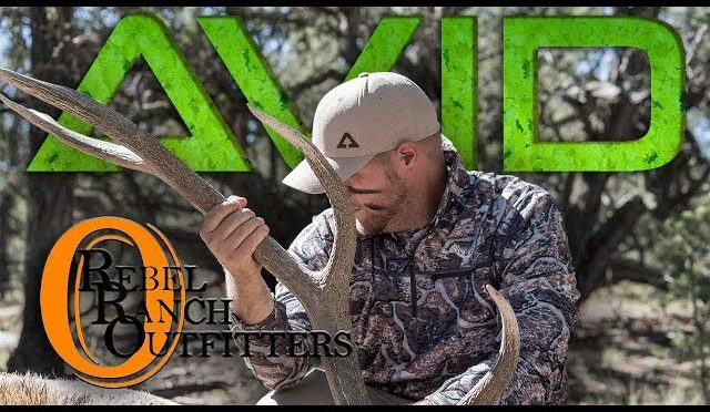 AVID Hunting & Outdoors ELK Hunt New Mexico Rebel Ranch Outfitters 2017