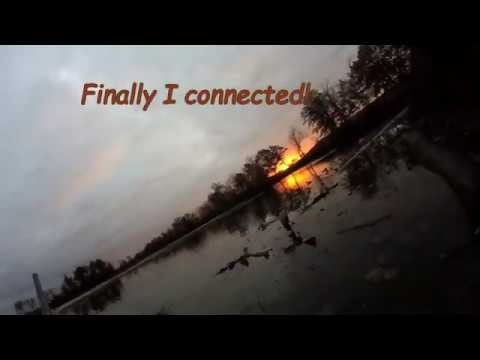 duck hunting a lake with the Browning 10 gauge