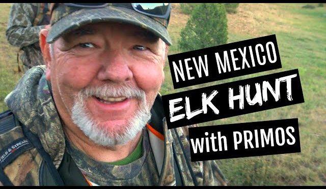 NEW MEXICO ELK HUNT WITH THE PRIMOS CREW