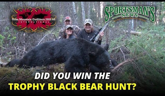 Pro Member Drawing for Itcha Mountain Black Bear Hunt
