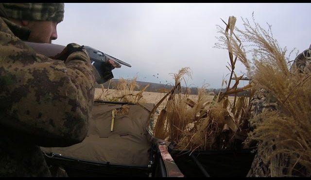 J&J Predators Canada Goose hunt