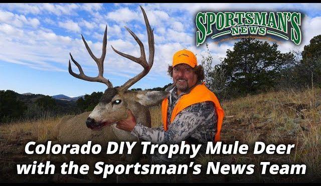 Colorado DIY Trophy Mule Deer with the Sportsman's News Team