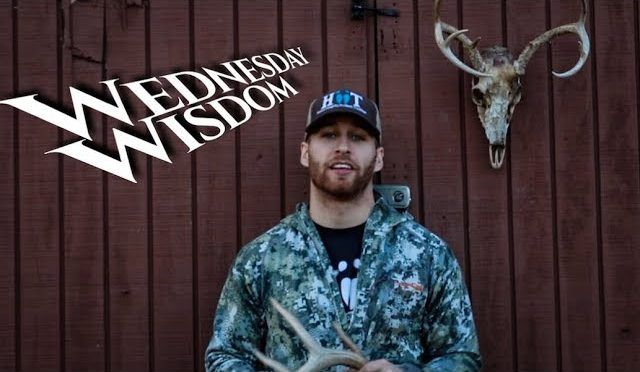 What Causes Deer To Shed | Wednesday Wisdom