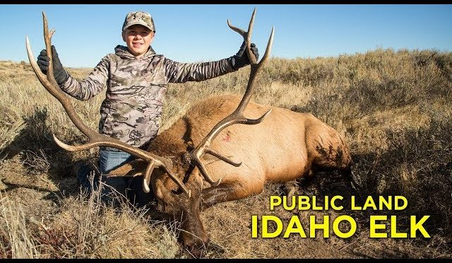 Public Land Hunting, Youth Idaho Elk Hunt