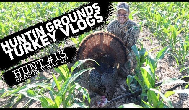 Turkey and Coyote Stalk & Shoot!  Turkey VLOG Wrap Up  #16  S9