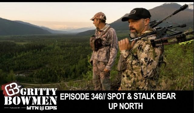 Episode 346: Spot & Stalk Bear Up North