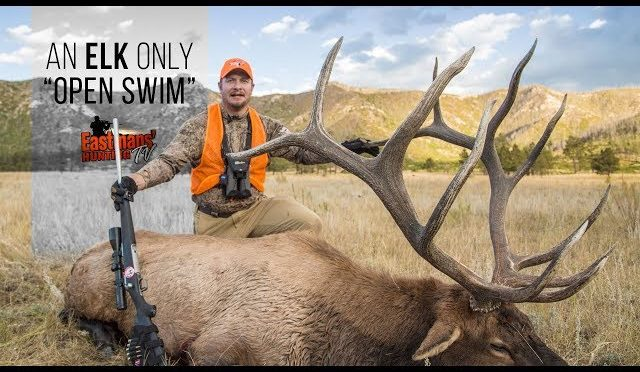 "Colorado Elk Hunting with Ike Eastman – An Elk ""Open Swim"""