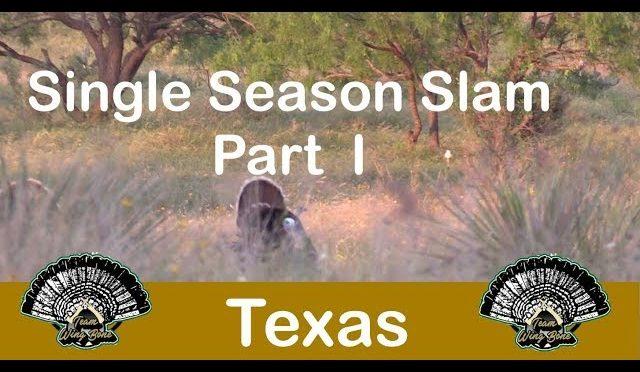 Team Wing Bone 2018 Texas Rio Grande Turkey Hunt Grand Slam K