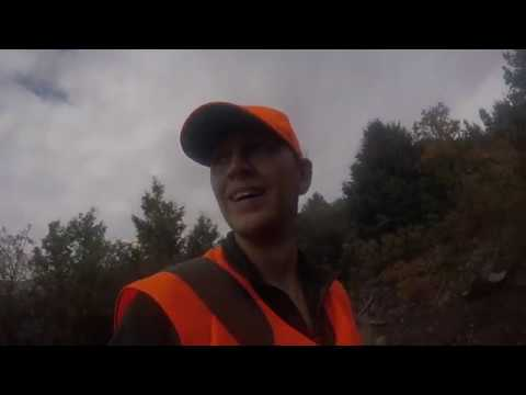 2018 Utah Spike Elk hunt