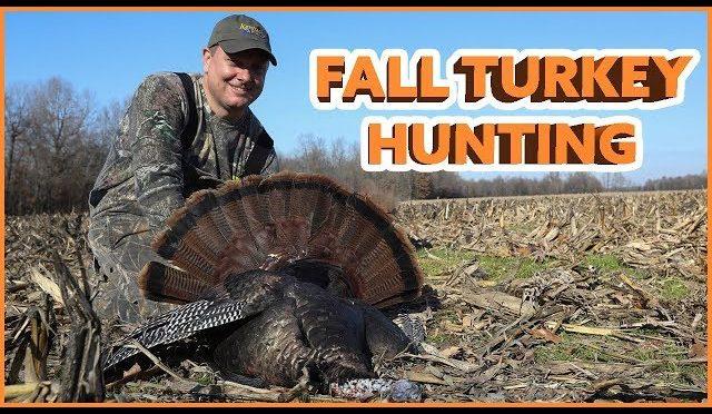 Fall Turkey Hunting in Kentucky