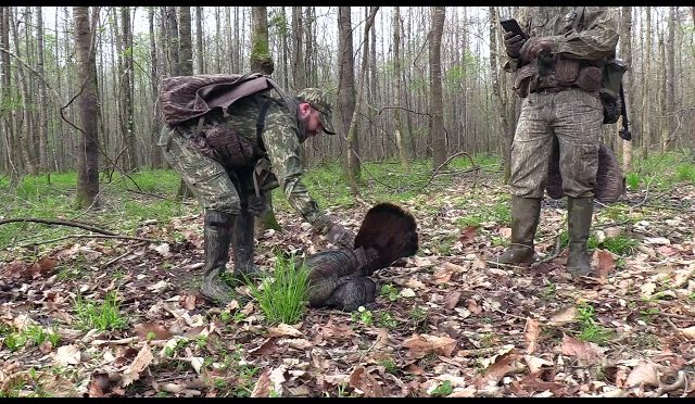 Mississippi Spring Turkey Hunt with Crooked Letter Calls