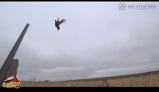 2018 South Dakota Pheasant Hunt