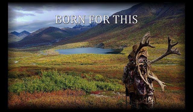Alaska Caribou Hunt 2018 Born For This Outdoors
