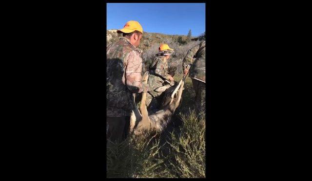 California D11 deer hunting (2nd deer)