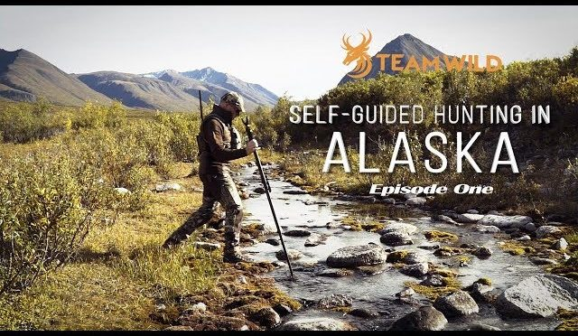 Hunting Moose and Caribou in Alaska: Self-guided drop hunt adventure
