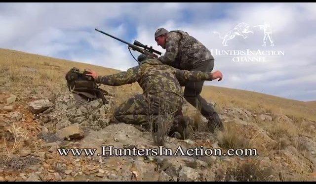 Konya Sheep Hunting in Turkey with Optimum Hunting