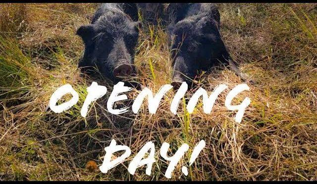 Myakka Hog Hunt: General Gun Opening Day 2018
