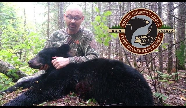 North Country Lodge Bear Hunt