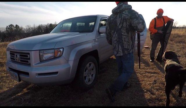 Pheasant Hunting 2017 (South Dakota)