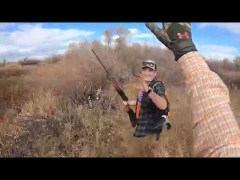pheasant hunting in idaho late oct to early nov 2018 – compressed