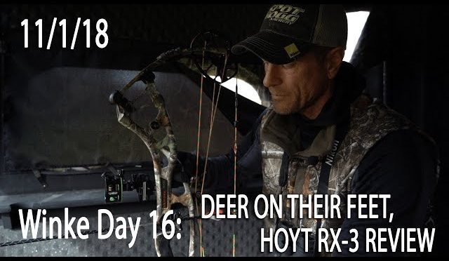 Winke Day 16 Deer On Their Feet 2019 Hoyt Rx 3 Review