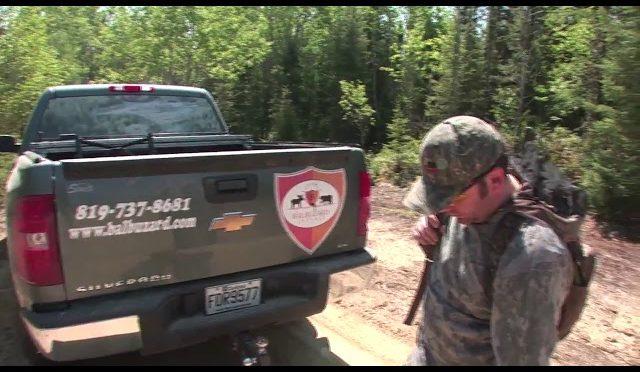 Black Bear Hunting in Canada1