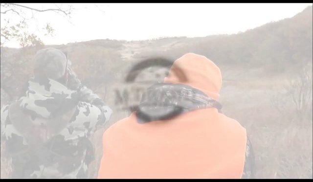 Colorado Elk Hunt at The MOTHERWELL RANCH - HuntingVideosHub com