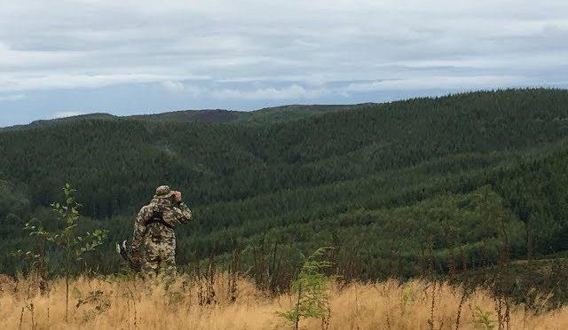 Elk Hunting in Washington 2018 part 2