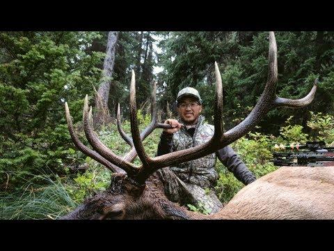 The Sound of September  – Ber Yang 2017 Bull Elk