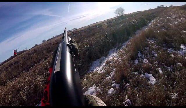 Pheasant Hunting in North Dakota 2018 GOPR1583 1
