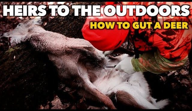 How to Gut a Deer   Heirs Shorts   GRAPHIC