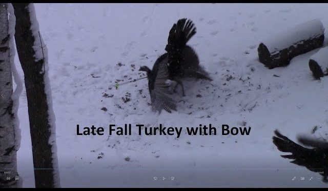 Late Fall Turkey with Bow second Cabela's gift card giveaway