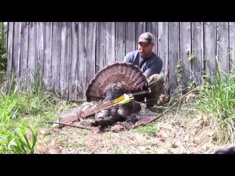 Maryland turkey hunting, Solo Pursuits (Spring turkey long bow)