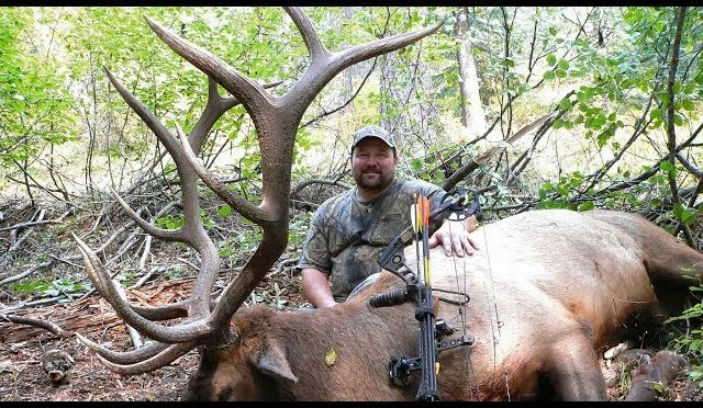 Fired Up – Hunting a Monster OTC Idaho Bull Elk in a Forest Fire