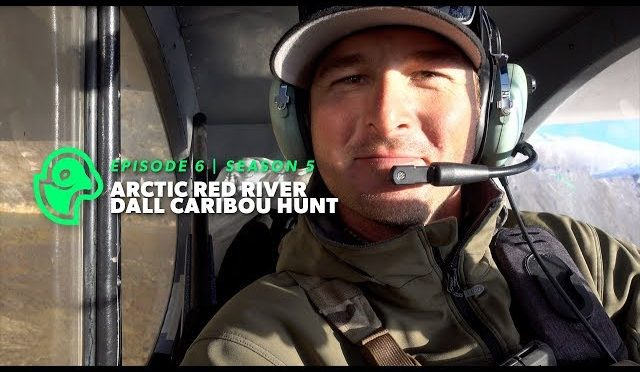 From a sheep hunt to caribou hunting – S.5 E.6 – Arctic Red Caribou Hunt