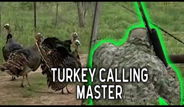 Worlds Best Turkey Calling and Hunting | Spring Turkey Season