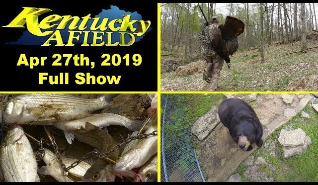 April 27th, 2019 Full Show – Spring Turkey Hunt, Salt River White Bass, Bear Aware