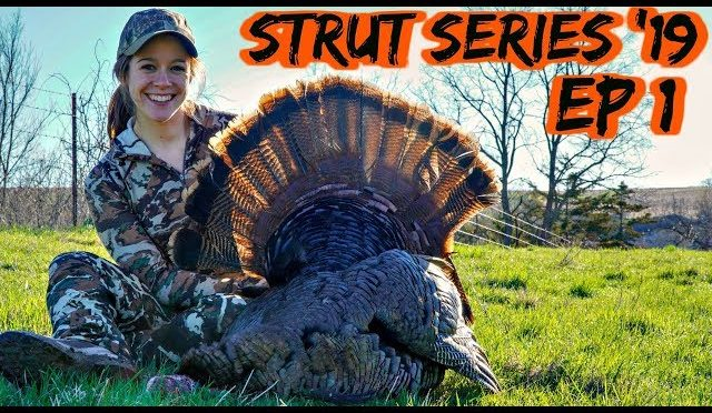 TURKEY AT 10 YARDS! | First Morning Success in Wisconsin