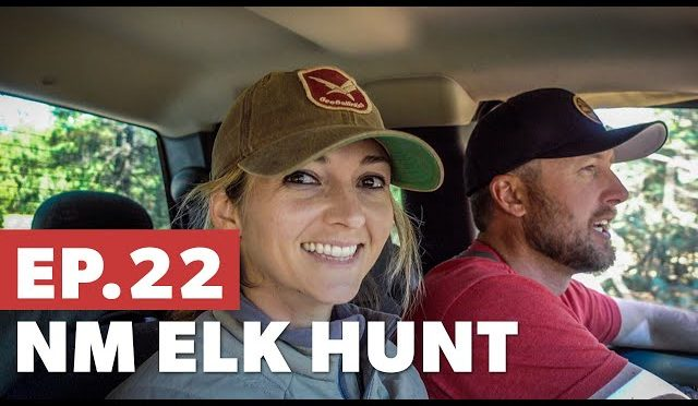 Where are the elk? – New Mexico Elk Hunt Pt. 1 – Sn 5.Ep 22
