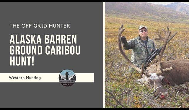 Alaska Barren Ground Caribou Hunt In Full VELVET Adventure Of A Lifetime! CARIBOU   SUPER SLAM