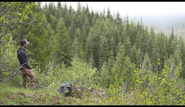 "Next Destination S3   E1 ""Cameraman Idaho Bear Hunt"""
