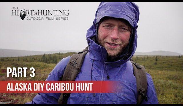 CARIBOU HUNTING THE HARD WAY – Alaska DIY Caribou Hunt (Part 3 of 5)