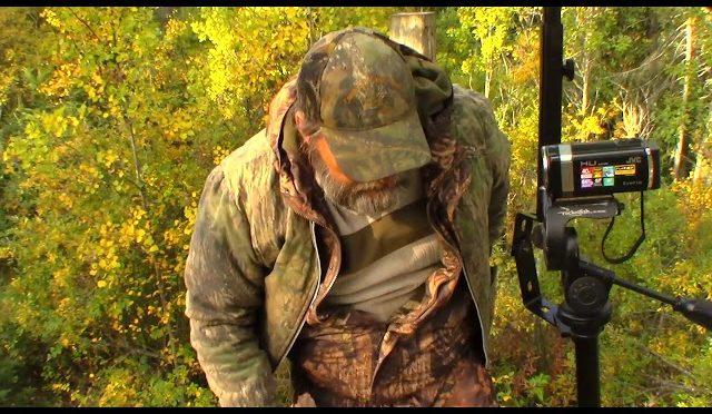 Black bear hunting.