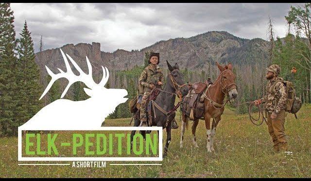 ELK-pedition | Our FIRST DIY Colorado Public Land Elk Hunt