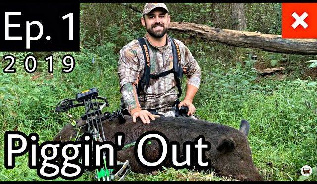 Georgia Hog Hunt | Justin's First Hog | Georgia Bow Season Opener!