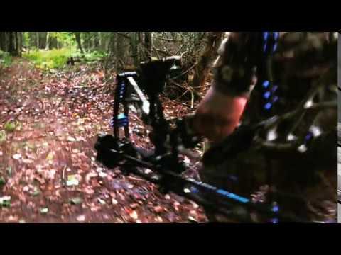 Quintin's Bear Hunt – *Teaser*
