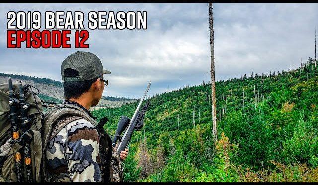 So Many Bears! – Washington Fall Bear Hunt | 2019 Hunting Season EP.12