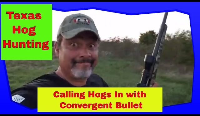 Texas Hog Hunting with the Convergent HP Bullet Electronic Caller