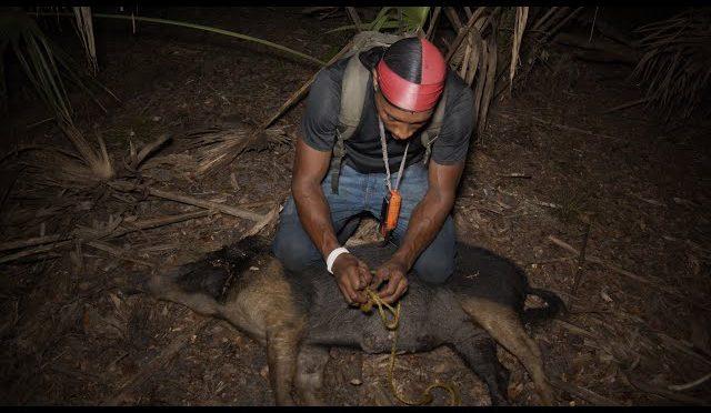 Wild Hog Adventures Episode 2