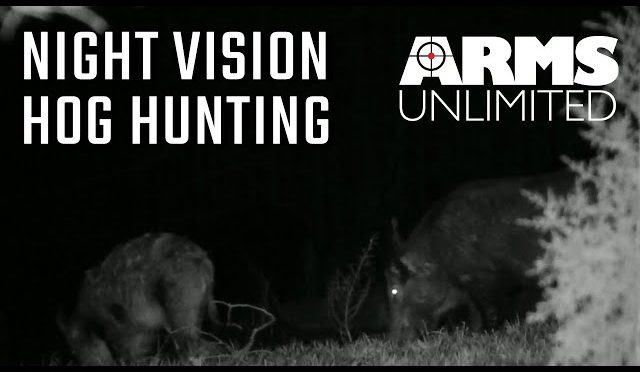 Night Vision Hog Hunt | 4 Kills